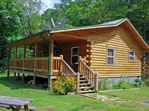 Discount Cabin Rental Bryson City Amp Bryson City Pet